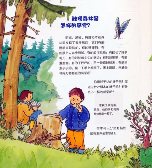 森林 动物手绘图